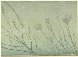Brian Curling, February, 2015, Farbholzschnitt auf Japanpapier, Auflage 10 Exemplare, Motiv 39 x 57, Blatt 49 x 67 cm